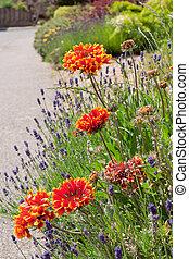 Summer Flower Garden Border.