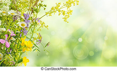 Summer flowers - Bouquet of summer meadow flowers with bokeh...