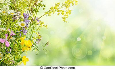 Summer flowers - Bouquet of summer meadow flowers with bokeh...