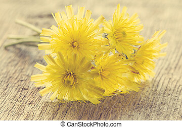 Summer flowers on a wooden background