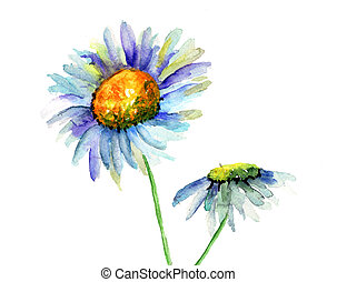 Summer flowers, watercolor flowers