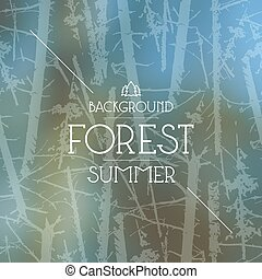 Summer forest background - Summer forest blurred background...