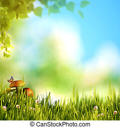 Summer forest view with green foliage, beauty mushrooms and butt