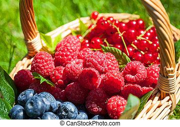 Summer fruit - Fresh summer fruit in a basket on the grass
