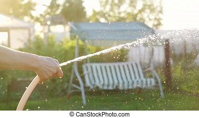 Summer garden smiling woman watering hose flower sunny day...