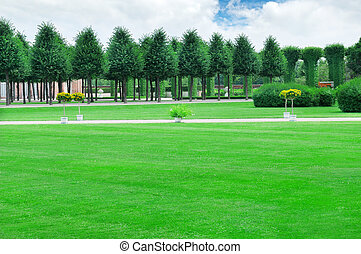 summer garden with beautiful lawns and avenues