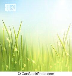 Summer Grass Background. Vector illustration, eps10, editable.