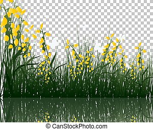 grass with reflections in water
