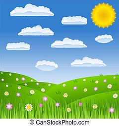 Summer green field