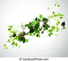 Summer green leaves