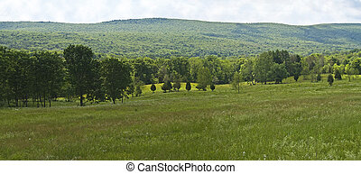 Summer Hillside - A panoramic Summer scene of a hillside in ...