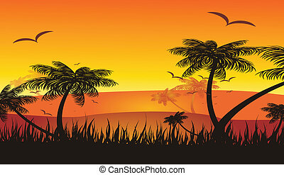 summer holiday tropical sunset