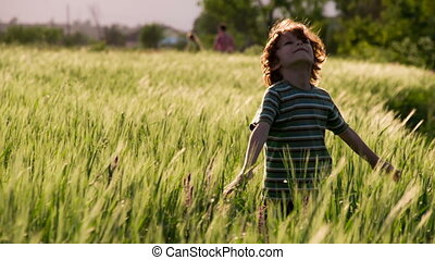 Summer Holidays - Little curly red-haired boy stands among...