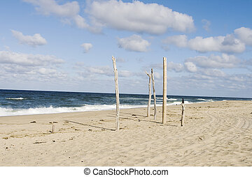 Summer in Cape Cod - Sandy beach on coast of Cape Cod