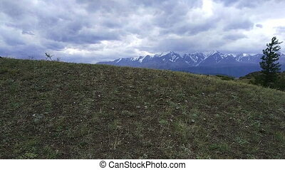 Kurai steppe and North-Chui ridge - Summer in Kurai steppe...