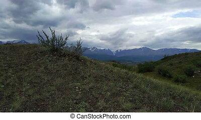 Kurai steppe and North-Chui ridge - Summer in Kurai steppe...