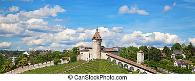 Summer in Schaffhausen - View on famous Munot fortifiction....