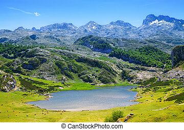 summer lake in Asturias