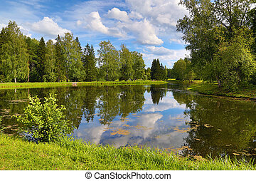 summer lake landscape in park