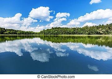 Summer lake landscape.