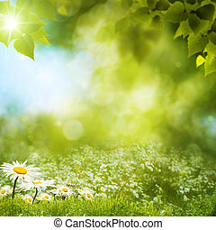 Summer landscape. Abstract environmental backgrounds