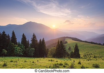Summer landscape at sunrise in the mountains