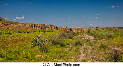 Summer landscape at Vadu