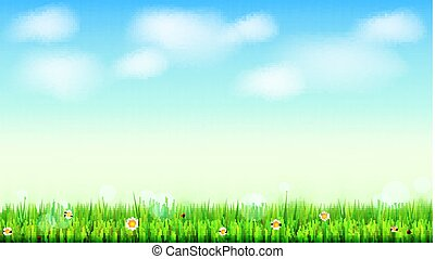 Summer landscape background, green, natural grass border with white daisies, camomile flower and small red ladybug. Blue sky, white clouds in the summer sky. Template for your design or creativity