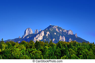 summer landscape in Ceahlau mountain. Romania