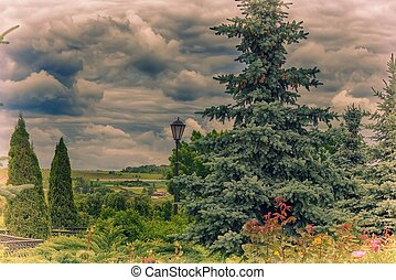 Summer landscape in cloudy weather.