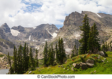 Summer Landscape in Colorado Mountains