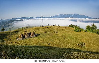 summer landscape in Romania