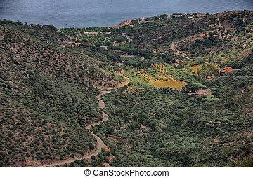 Summer landscape in Spain