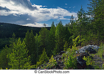 Summer landscape in the mountains on a background of forest and cloudy blue sky.
