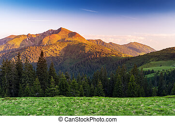 Summer landscape in the mountains with a beautiful sunrise