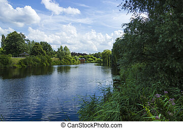 summer landscape in the netherlands