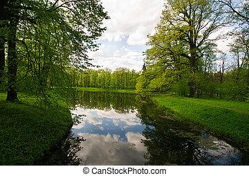Summer landscape in the park