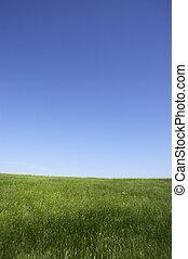 summer landscape - nature background(focus on the nearest ...