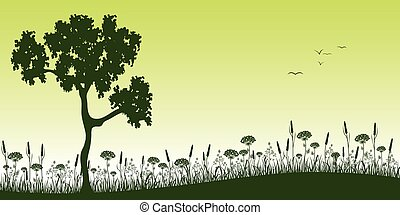 Summer landscape of a meadow with tree