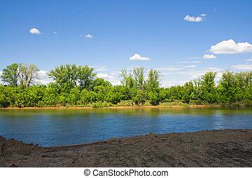 Summer landscape of green trees on blue sky background