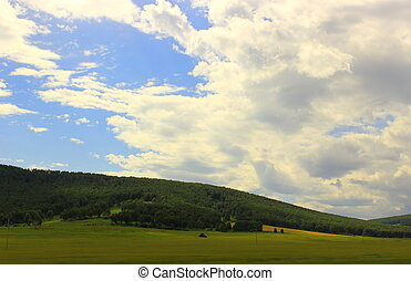 summer landscape of the Khakassia - Summer landscape with ...
