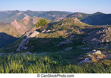 Summer landscape on a mountain ridge