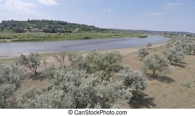 summer landscape on the banks of the green river. drone shooting.