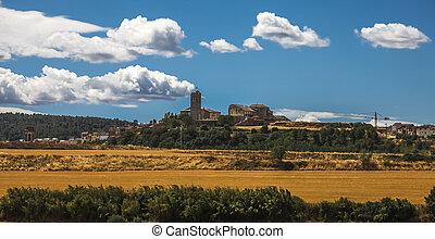Summer landscape. Spain