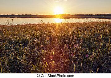 Summer landscape sunset over the lake on evening