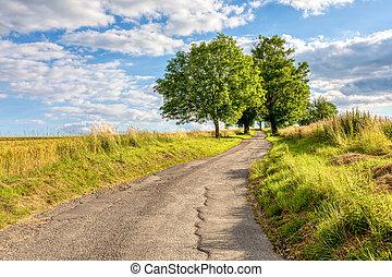 Summer landscape Vysocina Czech Republic - Asphalt road in ...