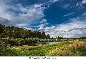 Summer landscape with a river. Western Siberia - The Inya ...