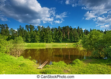 Summer landscape with a small lake on the background of pine trees.