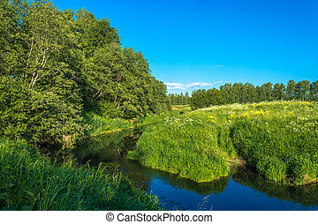 Summer landscape with a small river. - Summer landscape with...