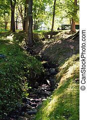 Summer landscape with a stream